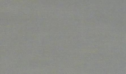 画像1: 綿支那パー (1)