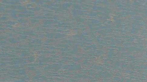画像1: 新緞子
